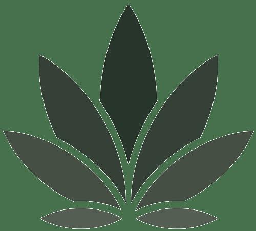 WeBelieve Logo